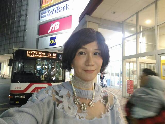 f:id:hikarireinagatsuki:20191115120733j:image