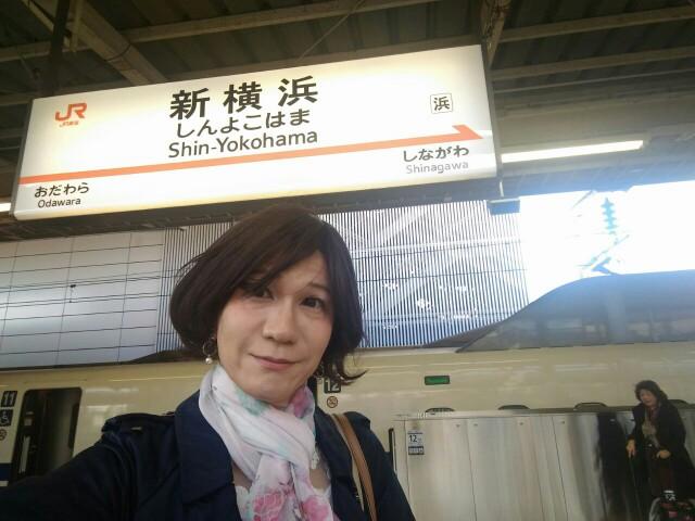 f:id:hikarireinagatsuki:20191118103659j:image