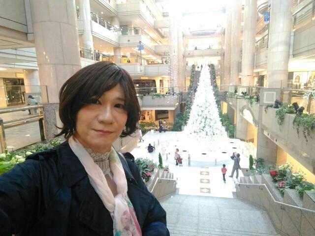 f:id:hikarireinagatsuki:20191122183624j:image