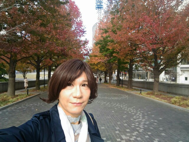 f:id:hikarireinagatsuki:20191122183716j:image