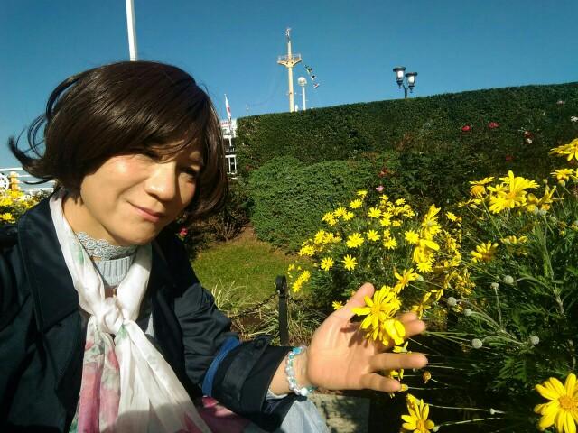 f:id:hikarireinagatsuki:20191122184254j:image