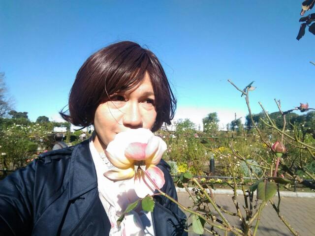 f:id:hikarireinagatsuki:20191122184408j:image