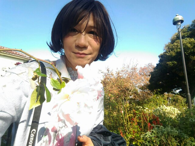 f:id:hikarireinagatsuki:20191122184537j:image