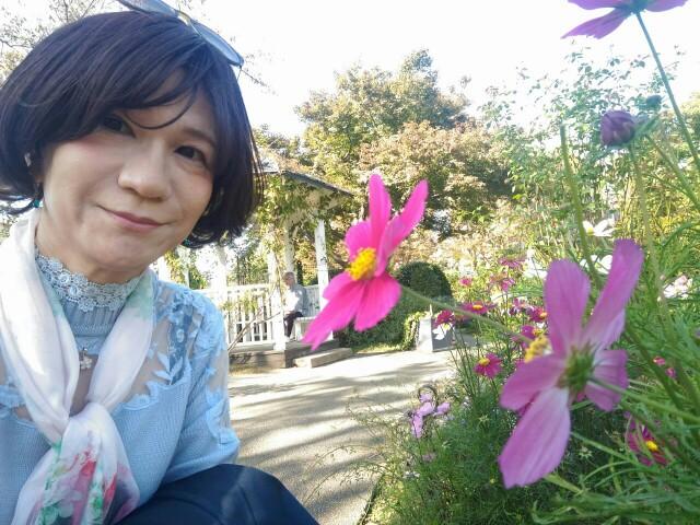 f:id:hikarireinagatsuki:20191122184633j:image