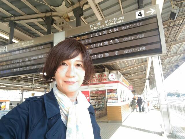 f:id:hikarireinagatsuki:20191122185051j:image