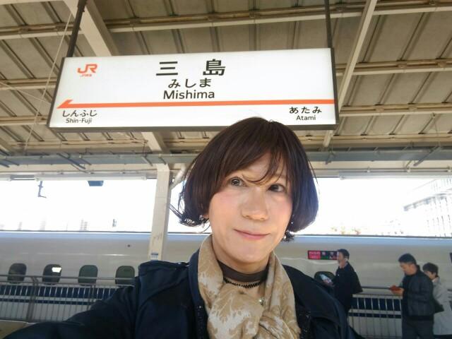 f:id:hikarireinagatsuki:20191130235545j:image