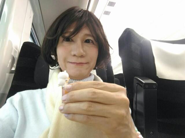 f:id:hikarireinagatsuki:20191210143853j:image