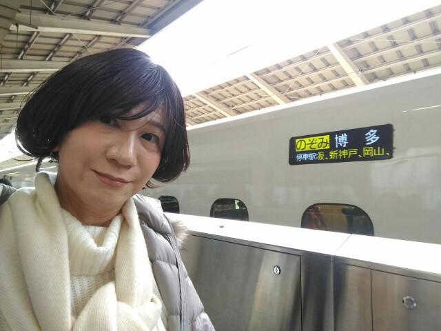 f:id:hikarireinagatsuki:20191211084843j:image