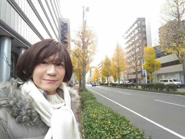 f:id:hikarireinagatsuki:20191212141026j:image
