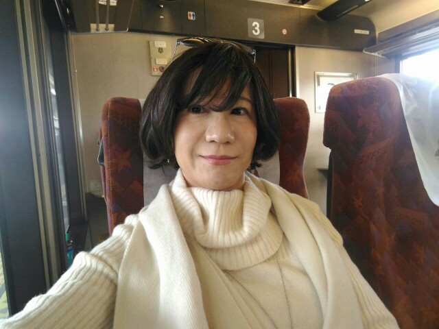 f:id:hikarireinagatsuki:20191213144519j:image