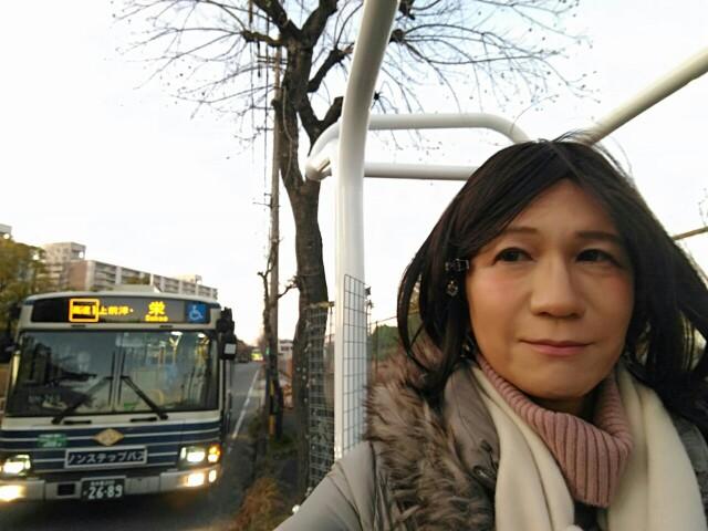 f:id:hikarireinagatsuki:20200206220740j:image
