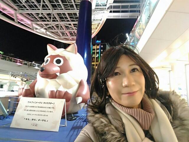 f:id:hikarireinagatsuki:20200206220934j:image