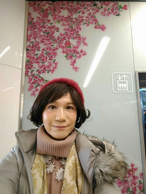 f:id:hikarireinagatsuki:20200215181805j:image