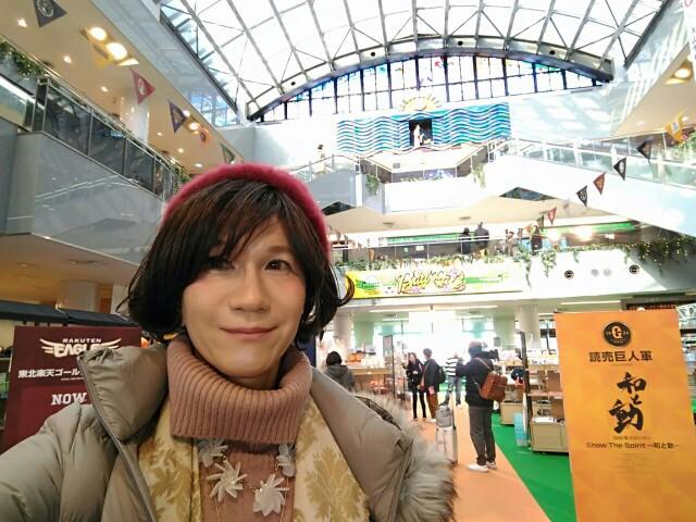 f:id:hikarireinagatsuki:20200215182011j:image