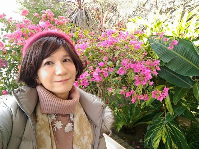 f:id:hikarireinagatsuki:20200215182053j:image