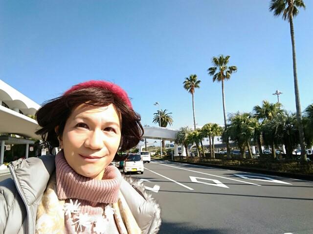 f:id:hikarireinagatsuki:20200215182204j:image
