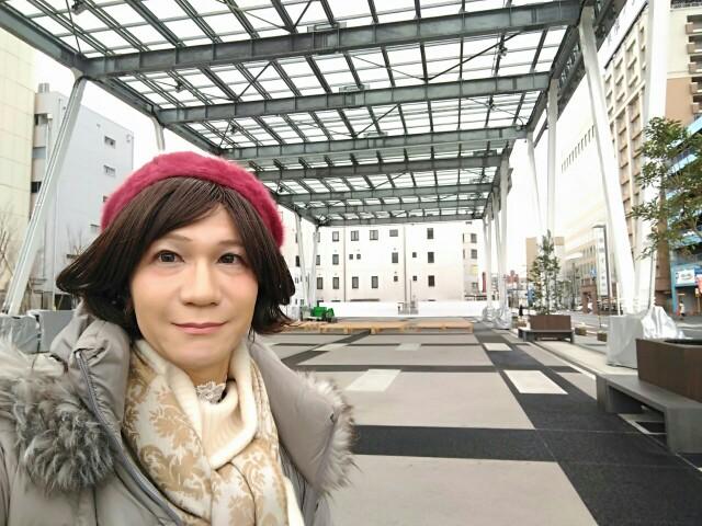 f:id:hikarireinagatsuki:20200215183653j:image