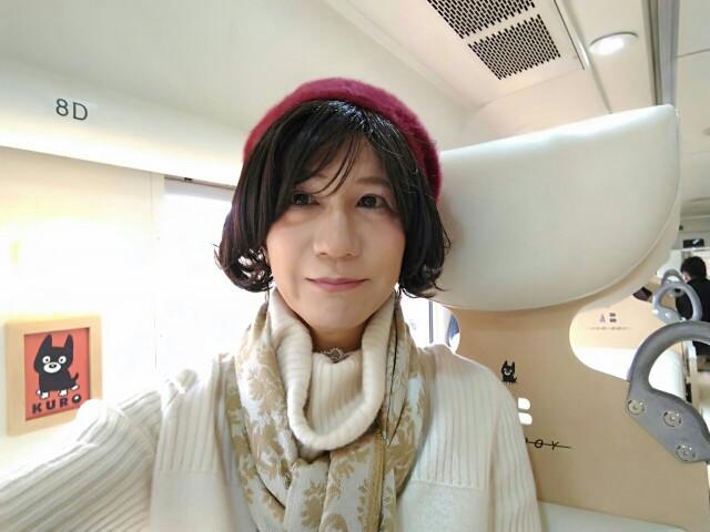 f:id:hikarireinagatsuki:20200215185622j:image