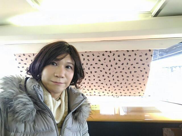 f:id:hikarireinagatsuki:20200215205021j:image