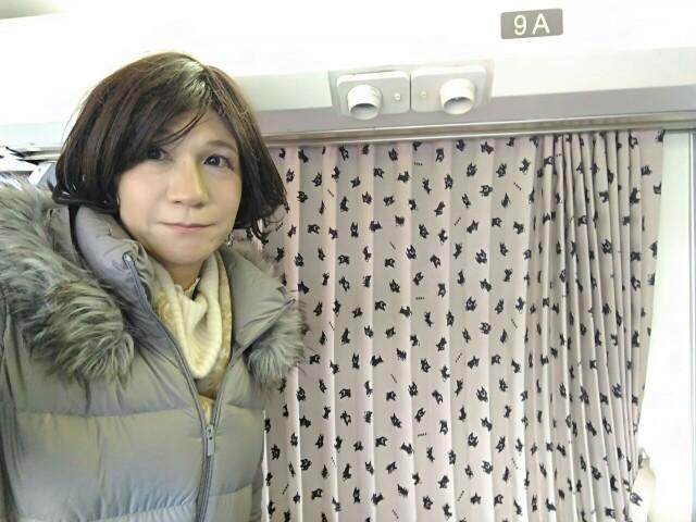 f:id:hikarireinagatsuki:20200215205039j:image