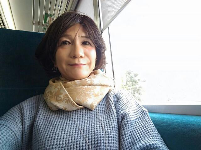 f:id:hikarireinagatsuki:20200216120928j:image