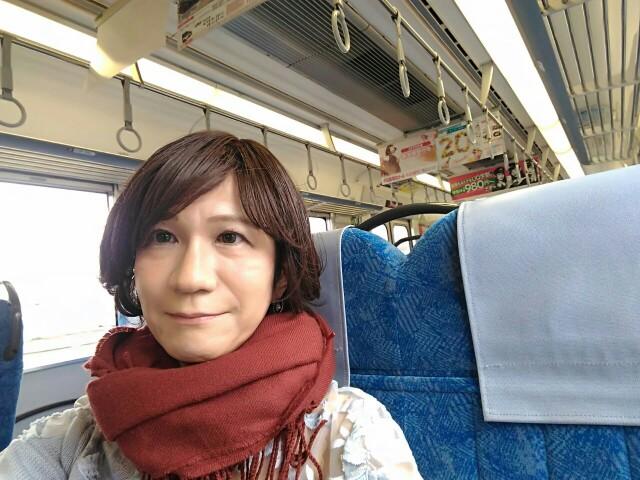 f:id:hikarireinagatsuki:20200318005417j:image