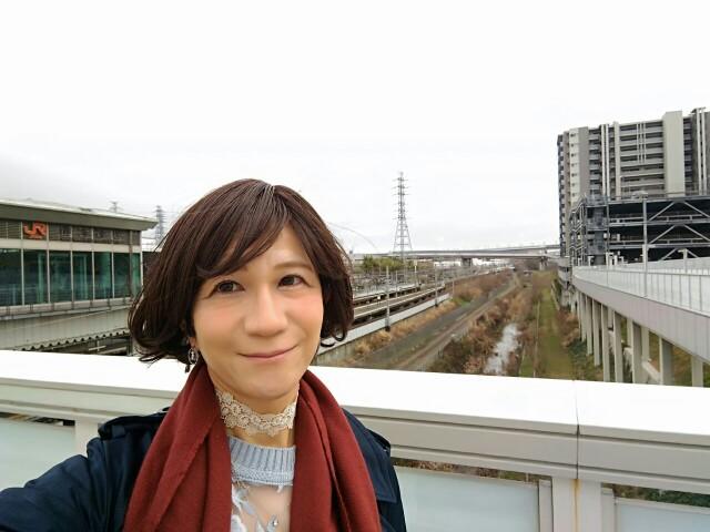 f:id:hikarireinagatsuki:20200318005427j:image