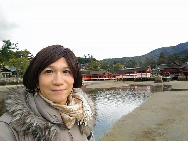 f:id:hikarireinagatsuki:20200324134334j:image
