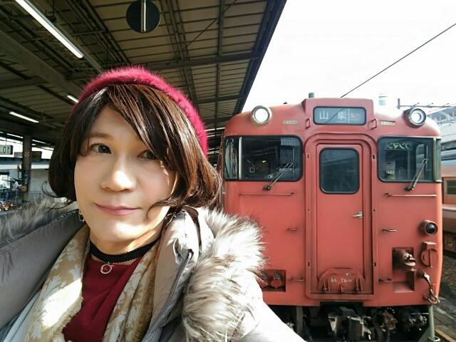 f:id:hikarireinagatsuki:20200328121400j:image