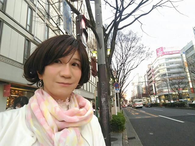 f:id:hikarireinagatsuki:20200328174415j:image