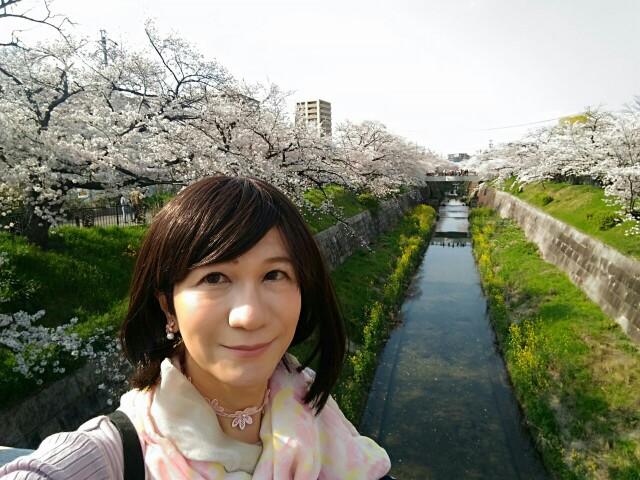 f:id:hikarireinagatsuki:20200408174403j:image