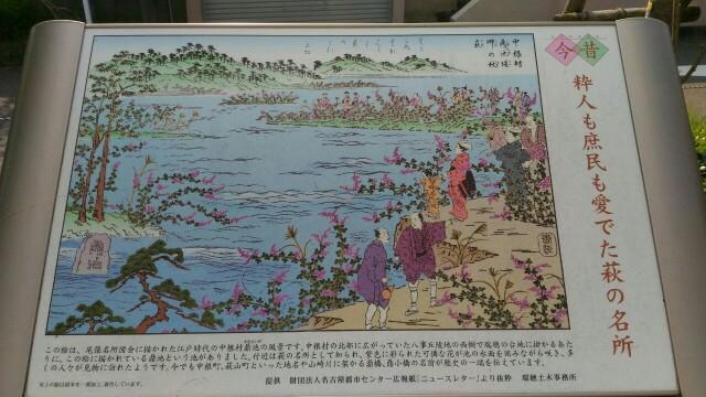 f:id:hikarireinagatsuki:20200408174438j:image