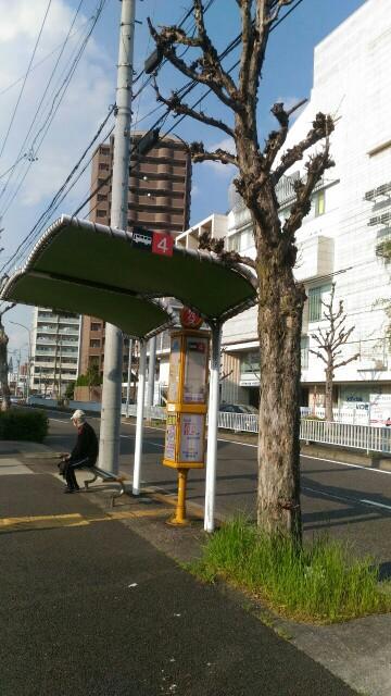 f:id:hikarireinagatsuki:20200408174500j:image