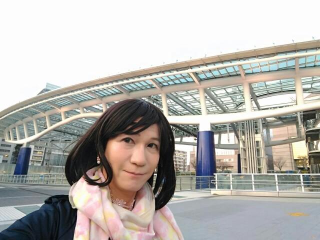 f:id:hikarireinagatsuki:20200408174543j:image