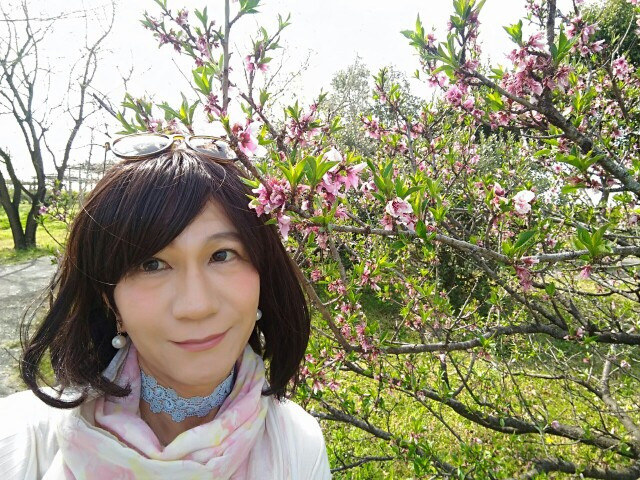 f:id:hikarireinagatsuki:20200414230243j:image