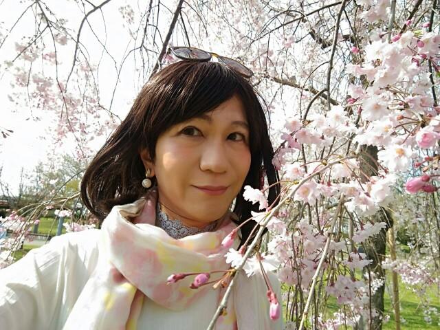 f:id:hikarireinagatsuki:20200414230254j:image