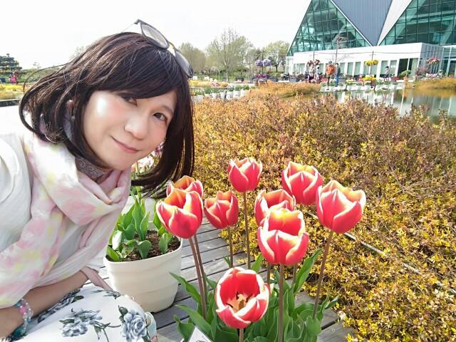 f:id:hikarireinagatsuki:20200414230418j:image