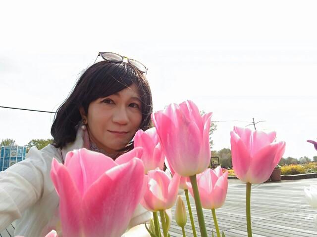f:id:hikarireinagatsuki:20200414230429j:image