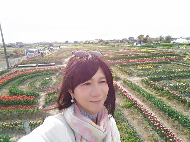 f:id:hikarireinagatsuki:20200414230915j:image