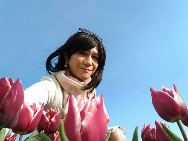 f:id:hikarireinagatsuki:20200414230947j:image