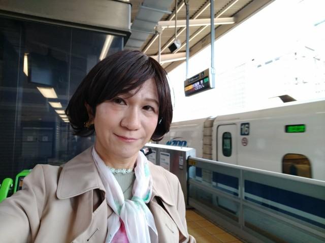 f:id:hikarireinagatsuki:20200429134027j:image
