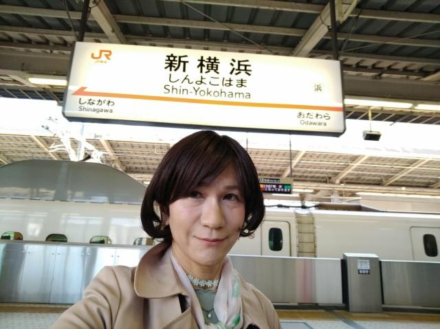 f:id:hikarireinagatsuki:20200429134139j:image