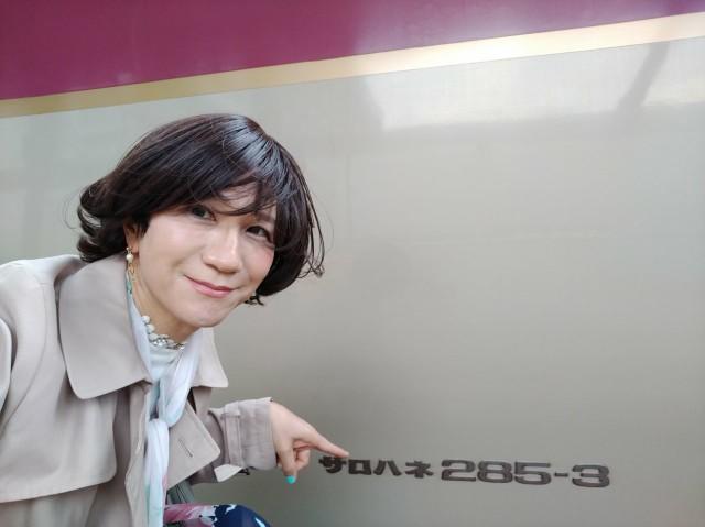 f:id:hikarireinagatsuki:20200430081130j:image