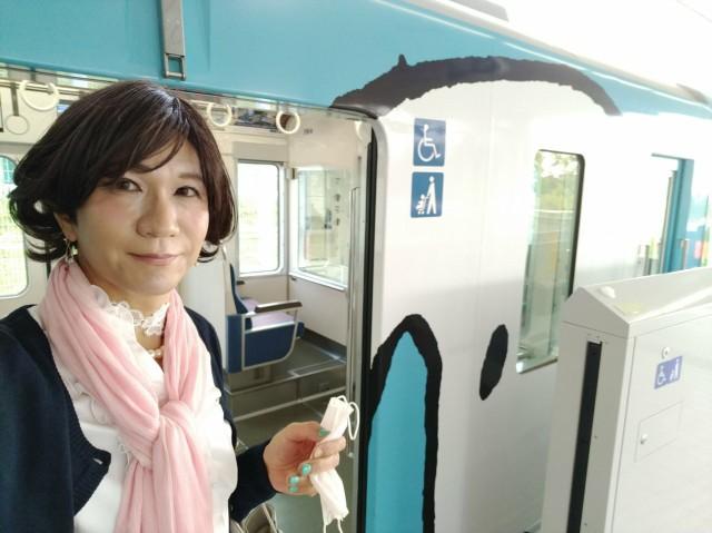 f:id:hikarireinagatsuki:20200430132245j:image
