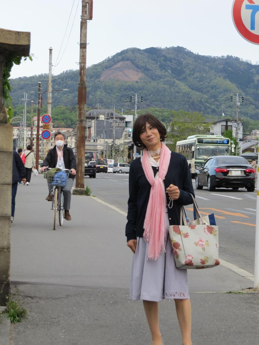 f:id:hikarireinagatsuki:20200430191655j:plain