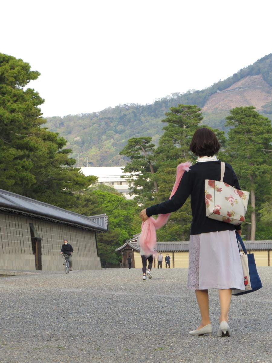 f:id:hikarireinagatsuki:20200430192108j:plain