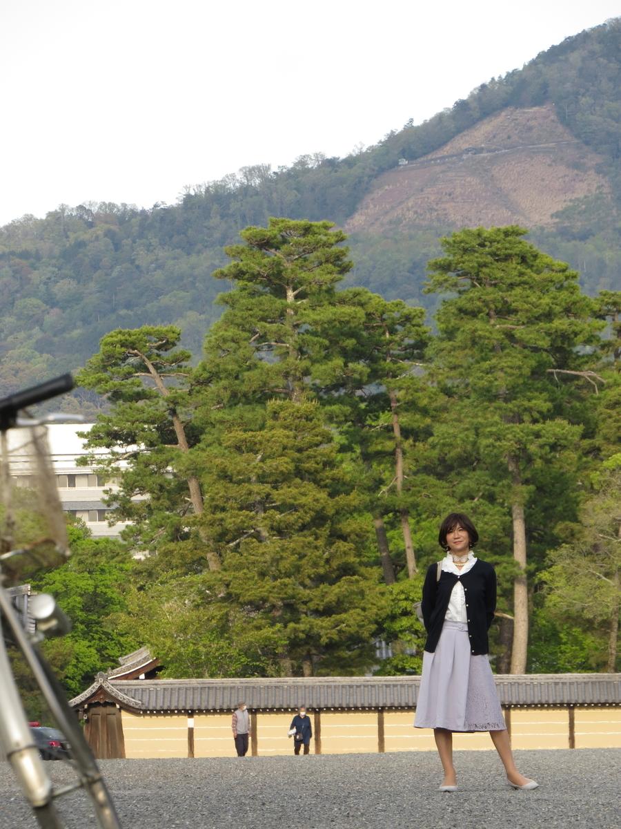 f:id:hikarireinagatsuki:20200430192201j:plain