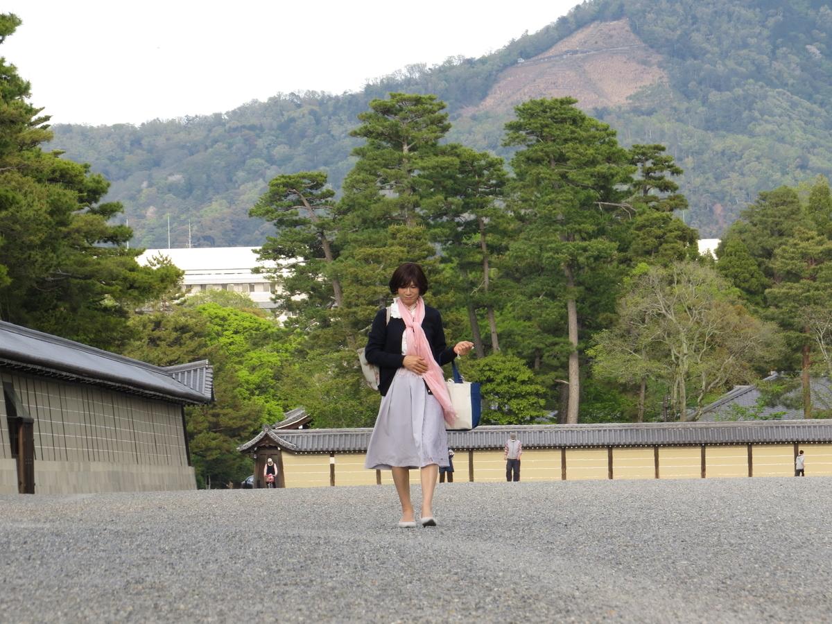 f:id:hikarireinagatsuki:20200430192415j:plain