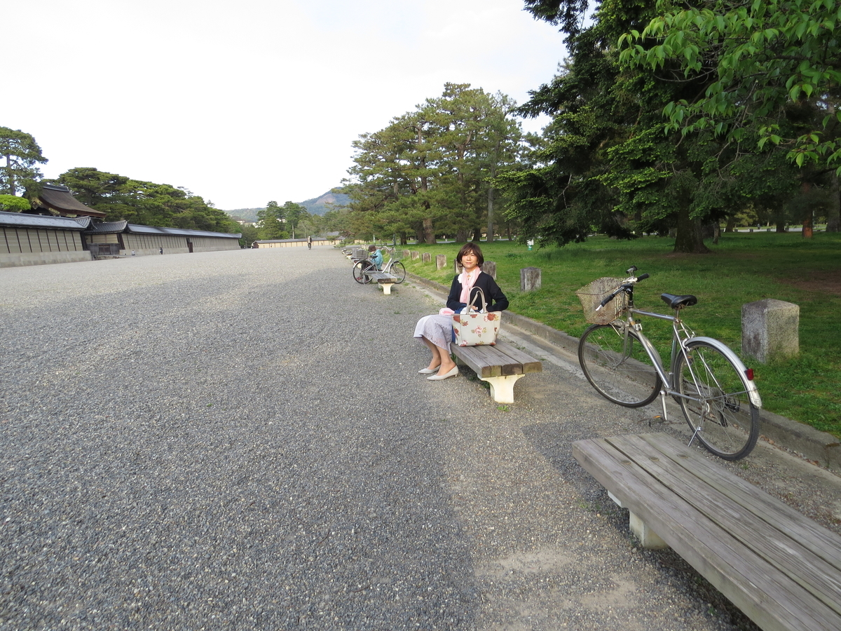 f:id:hikarireinagatsuki:20200430192439j:plain
