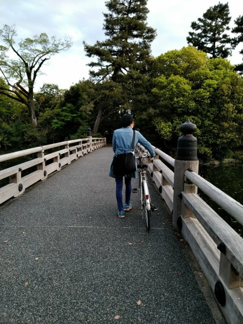f:id:hikarireinagatsuki:20200501080612j:image